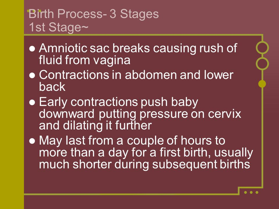 Birth Process- 3 Stages 1st Stage~