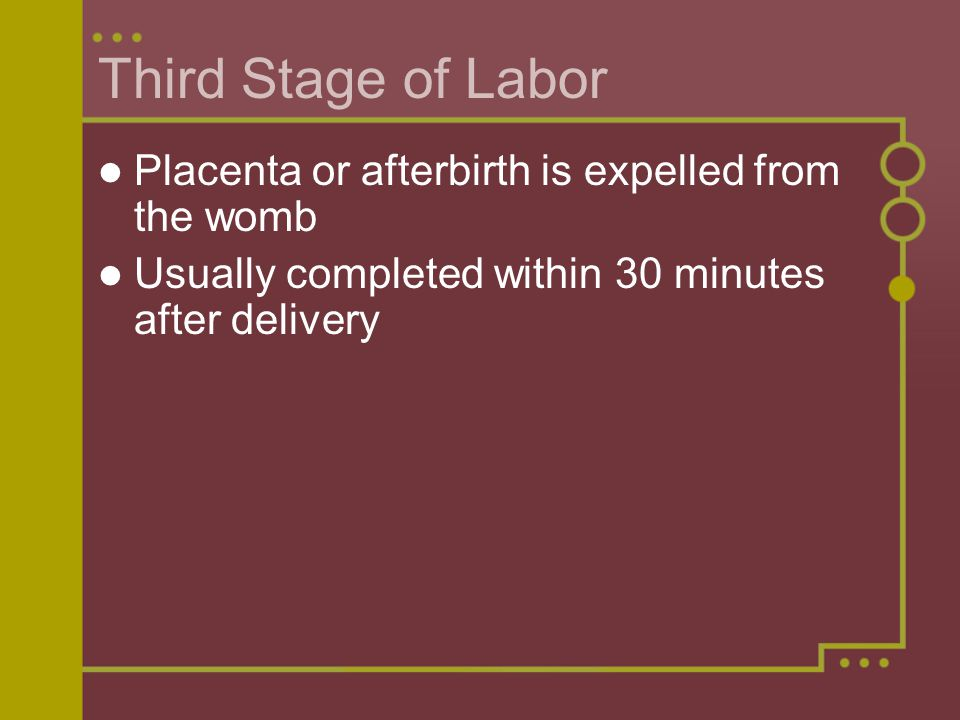 Third Stage of Labor Placenta or afterbirth is expelled from the womb