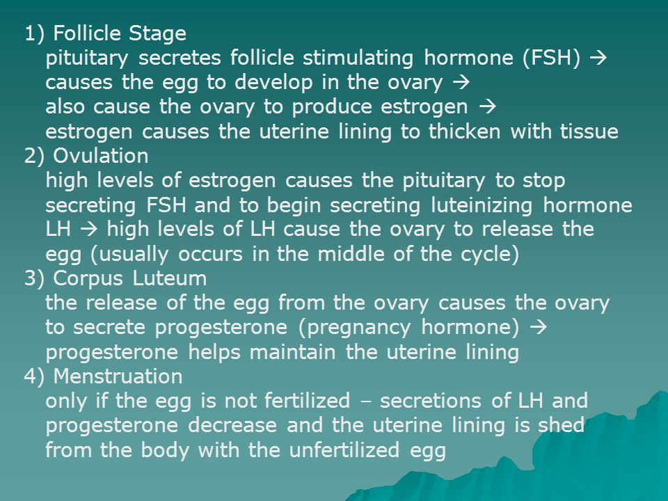 1) Follicle Stage pituitary secretes follicle stimulating hormone (FSH)  causes the egg to develop in the ovary 