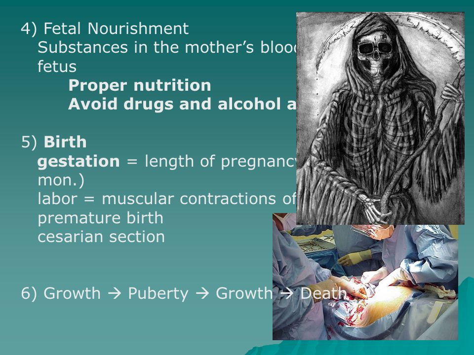 4) Fetal Nourishment Substances in the mother's blood pass to the. fetus. Proper nutrition. Avoid drugs and alcohol and Viruses.