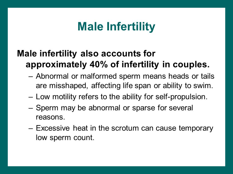 Male Infertility Male infertility also accounts for approximately 40% of infertility in couples.