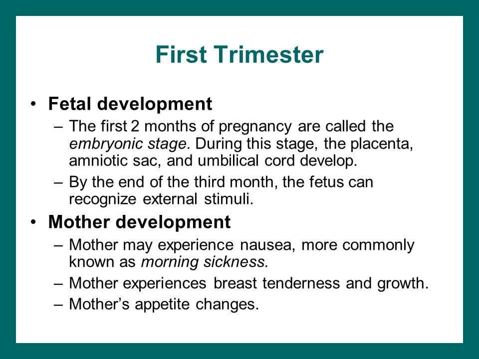 First Trimester Fetal development Mother development