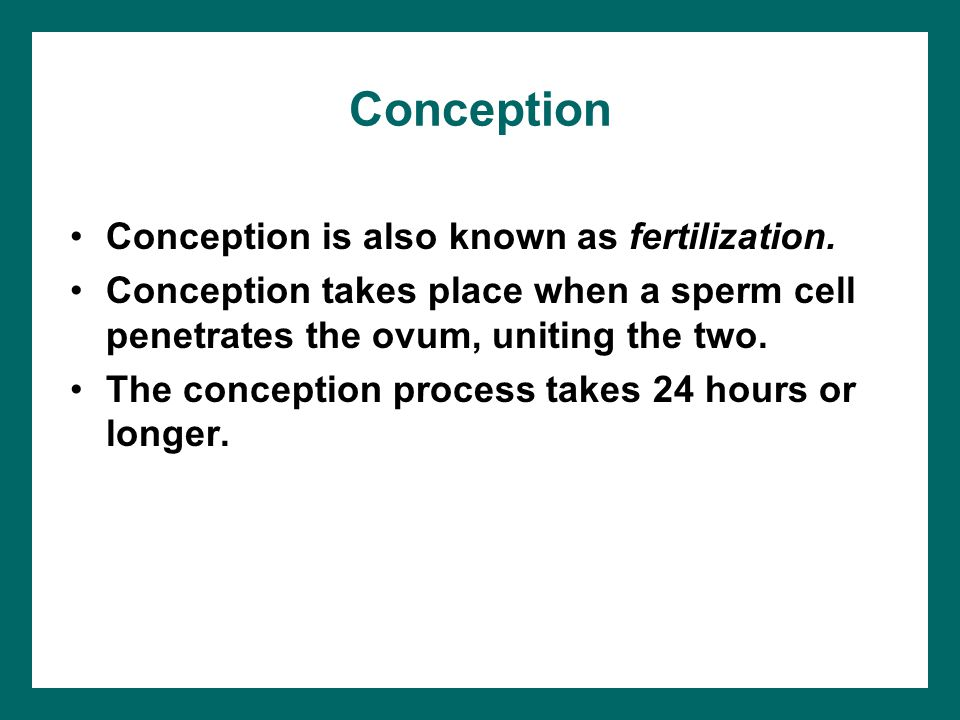 Conception Conception is also known as fertilization.