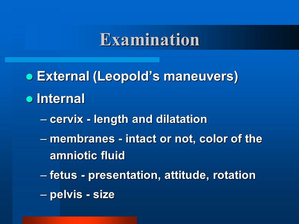 Examination External (Leopold's maneuvers) Internal