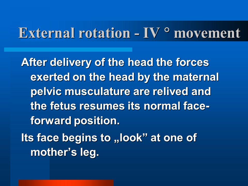 External rotation - IV  movement