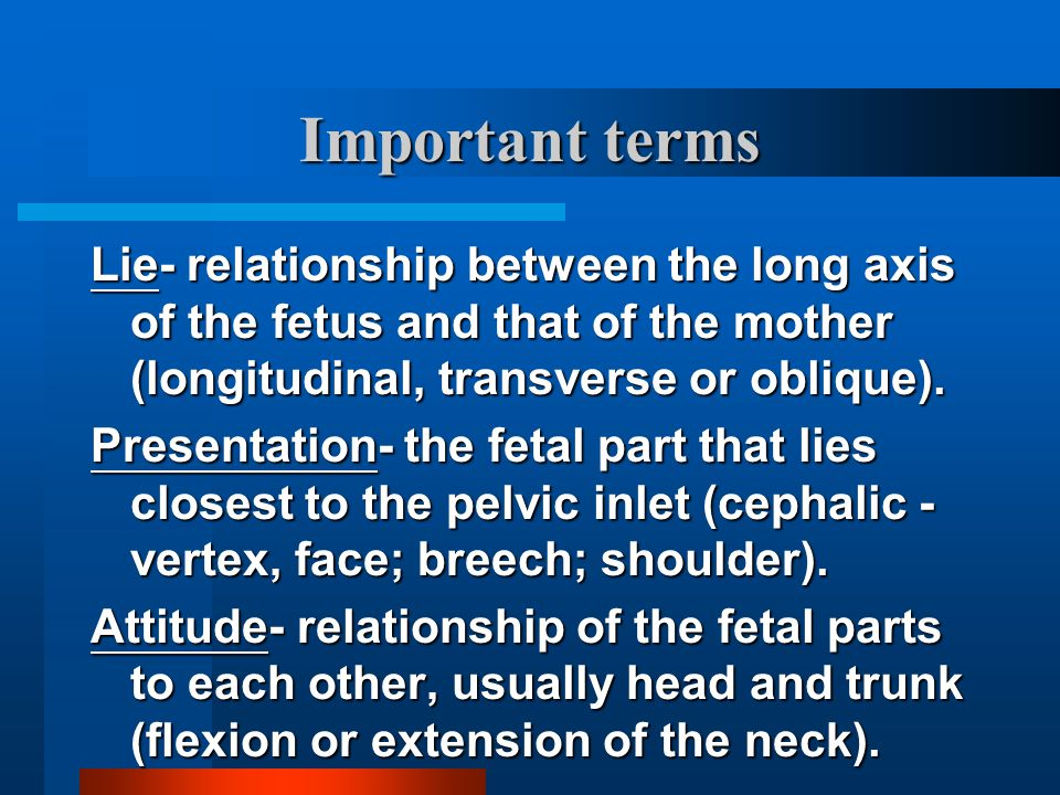 Important terms Lie- relationship between the long axis of the fetus and that of the mother (longitudinal, transverse or oblique).