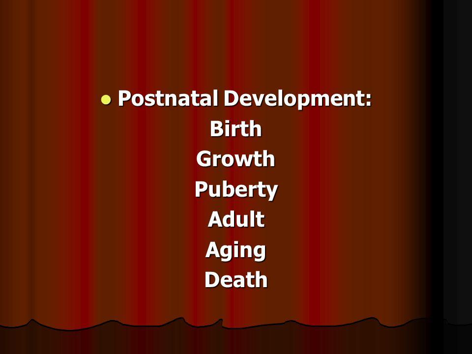 Postnatal Development: