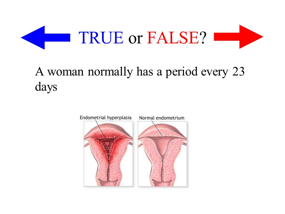 TRUE or FALSE A woman normally has a period every 23 days