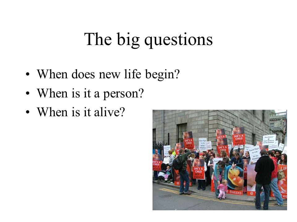 The big questions When does new life begin When is it a person