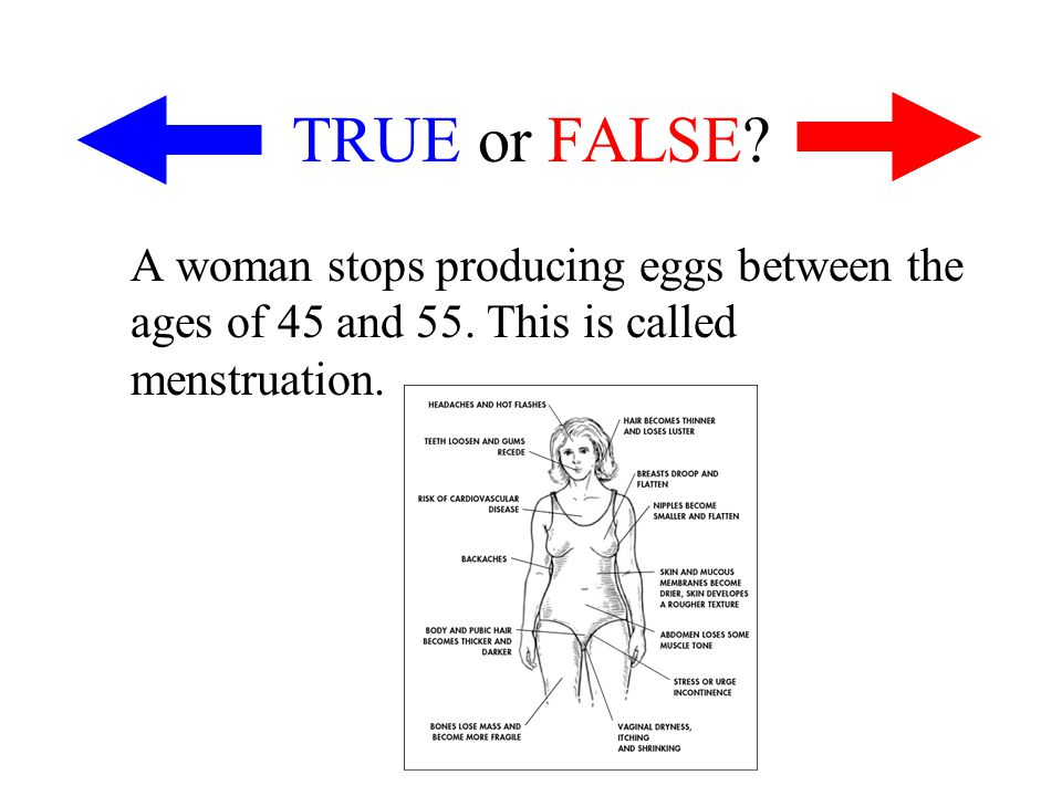 TRUE or FALSE. A woman stops producing eggs between the ages of 45 and 55.
