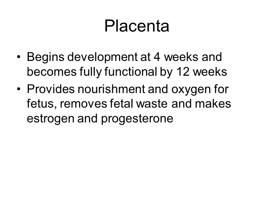 Placenta Begins development at 4 weeks and becomes fully functional by 12 weeks.