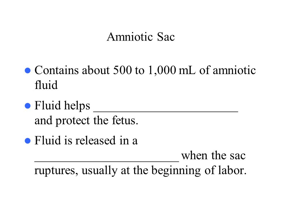Amniotic Sac Contains about 500 to 1,000 mL of amniotic fluid. Fluid helps _______________________ and protect the fetus.