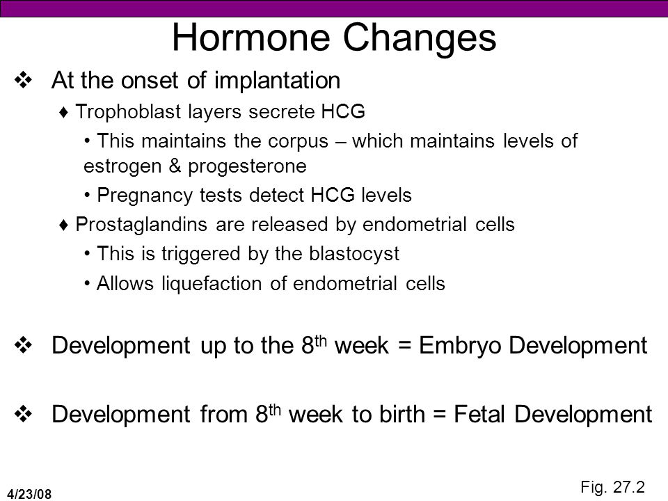 Hormone Changes At the onset of implantation