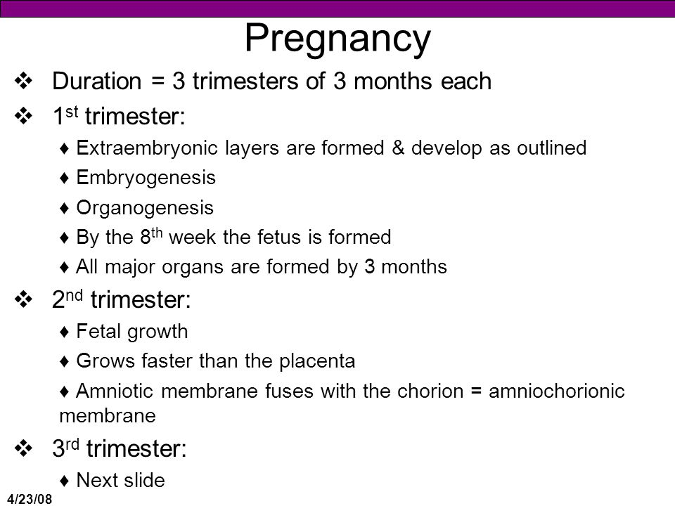 Pregnancy Duration = 3 trimesters of 3 months each 1st trimester: