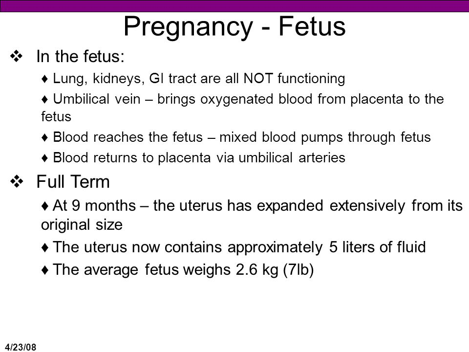 Pregnancy - Fetus Full Term In the fetus: