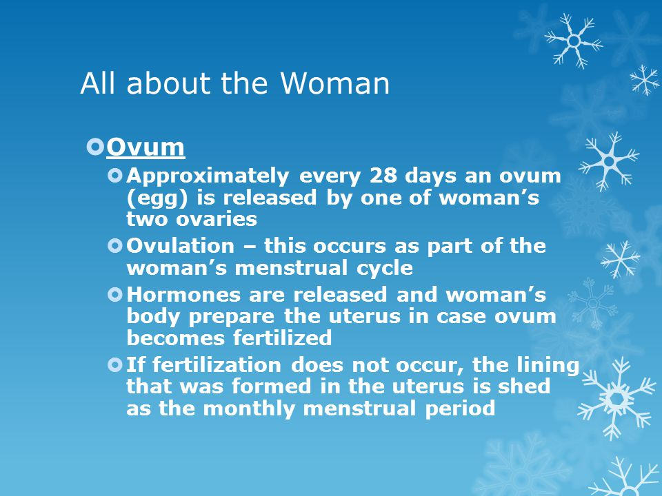 All about the Woman Ovum