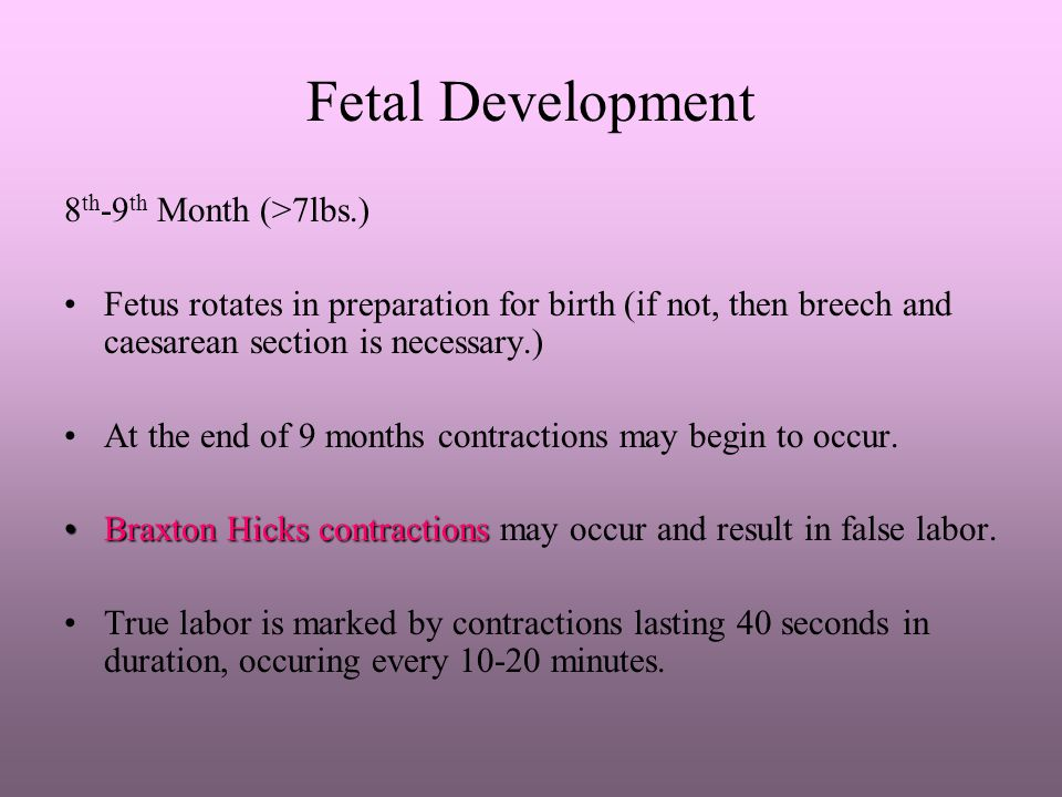 Fetal Development 8th-9th Month (>7lbs.)