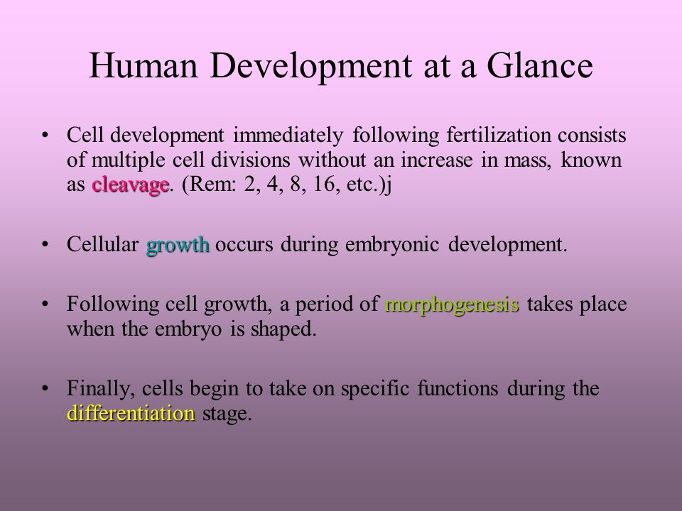 Human Development at a Glance