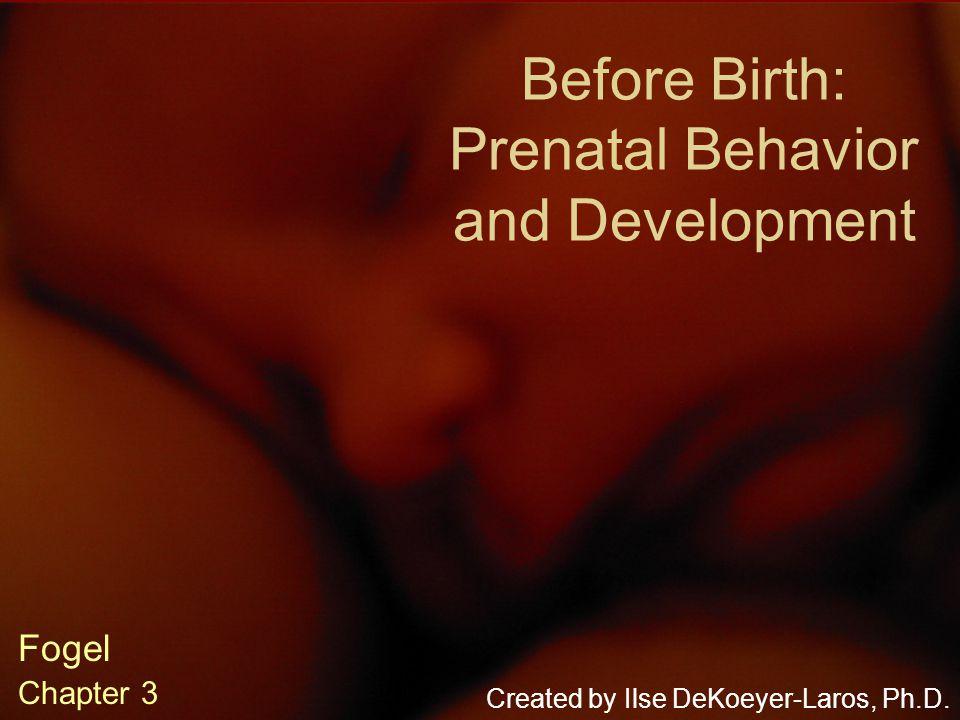 Before Birth: Prenatal Behavior and Development