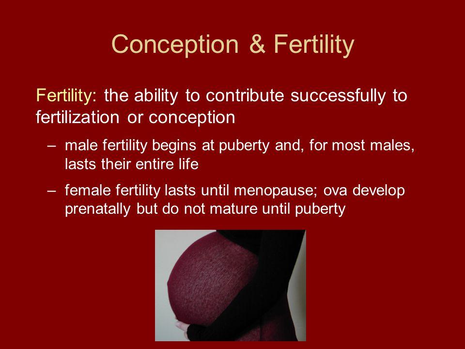 Conception & Fertility