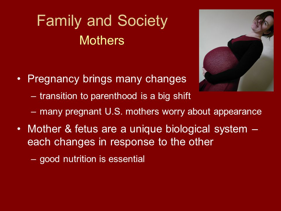 Family and Society Mothers