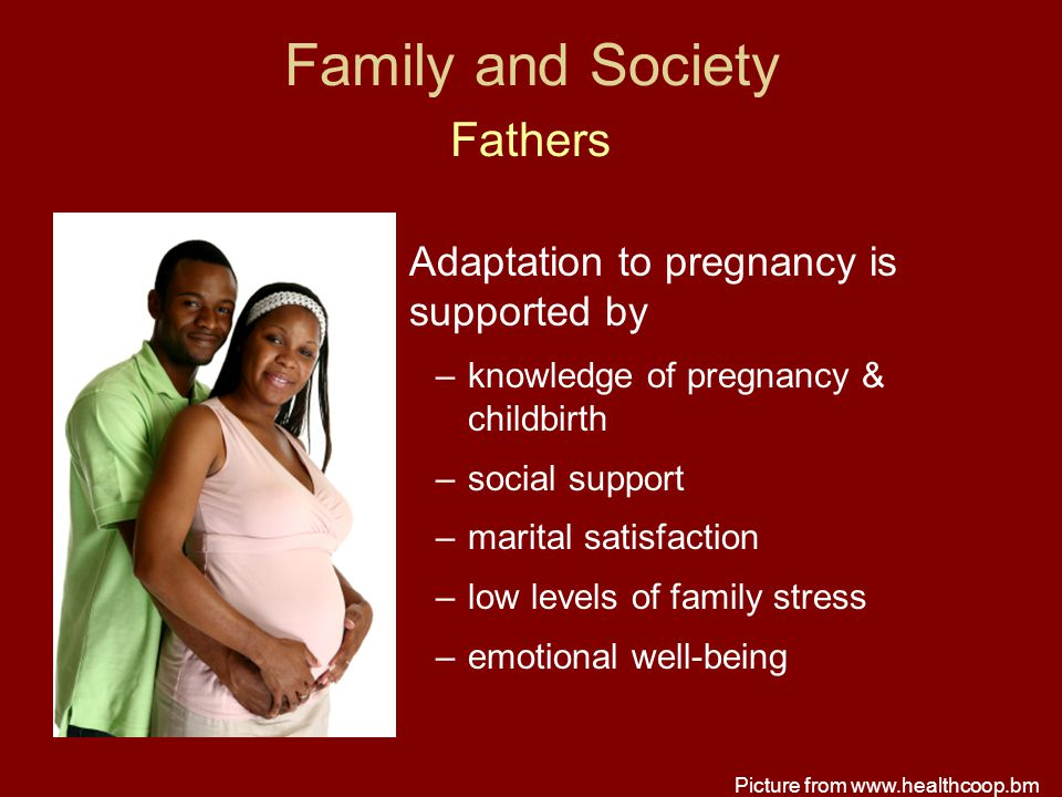 Family and Society Fathers