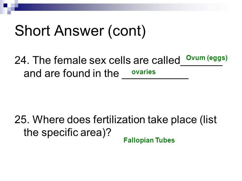 Short Answer (cont) 24. The female sex cells are called_______ and are found in the ___________.