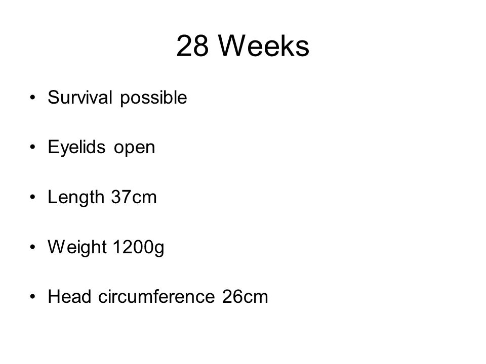 28 Weeks Survival possible Eyelids open Length 37cm Weight 1200g