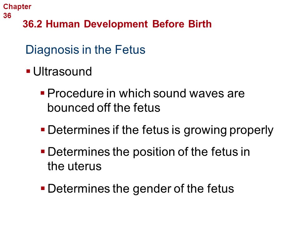 Procedure in which sound waves are bounced off the fetus