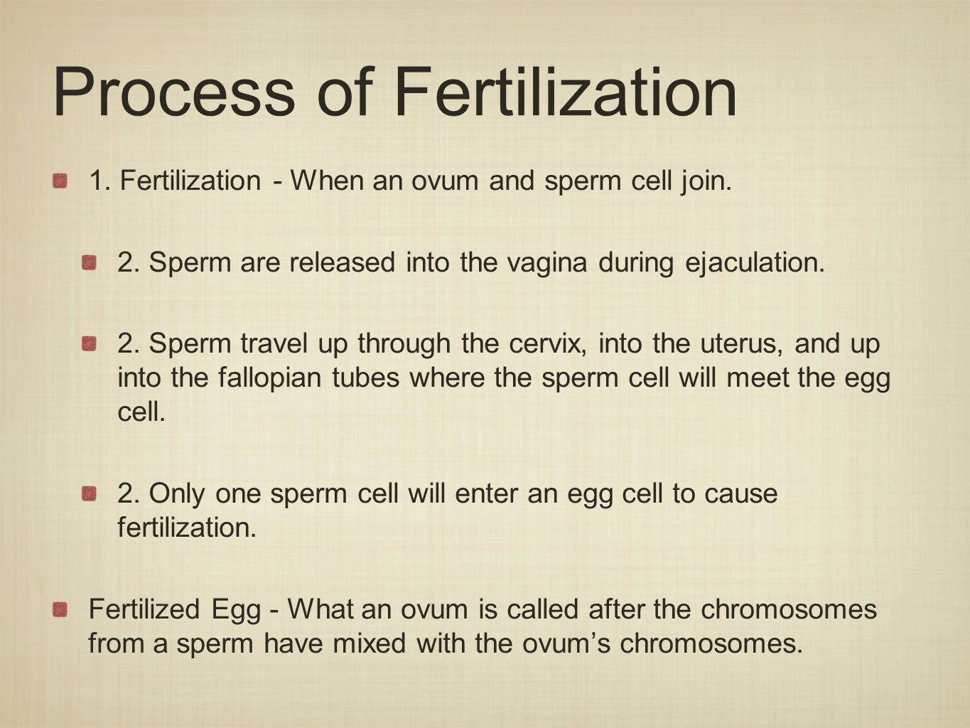 Process of Fertilization