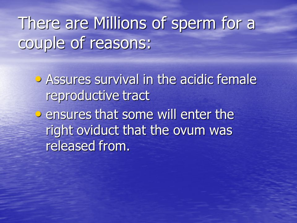 There are Millions of sperm for a couple of reasons:
