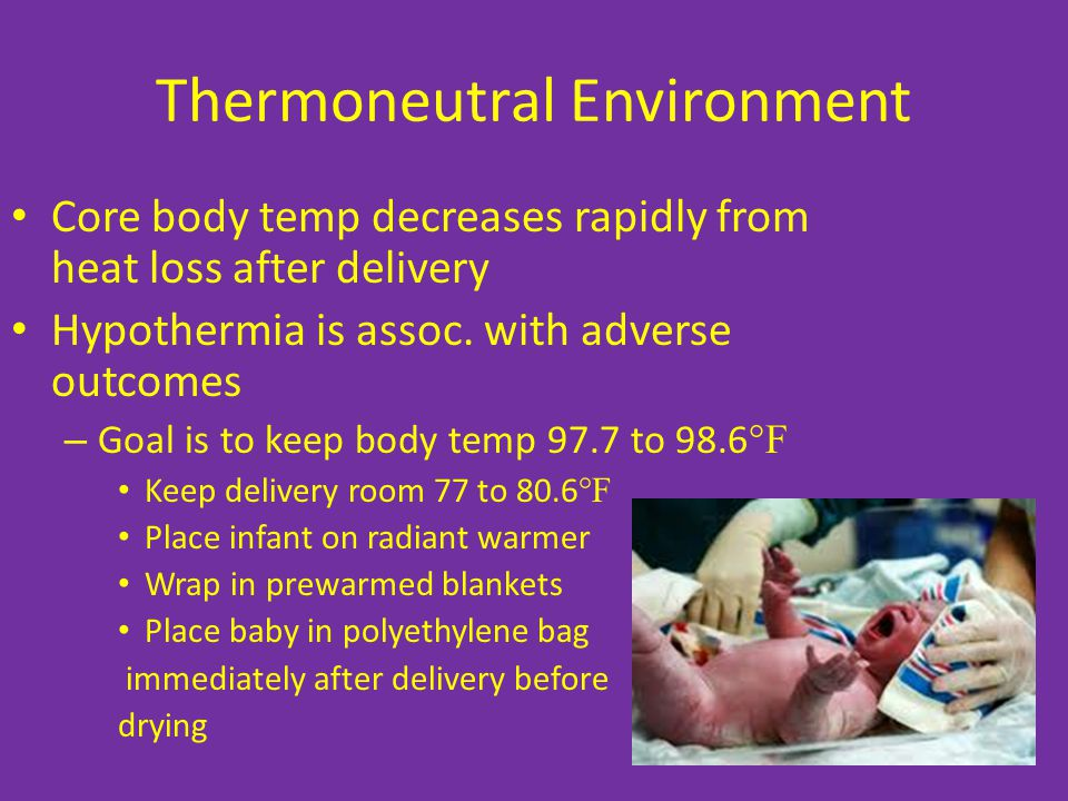 Thermoneutral Environment