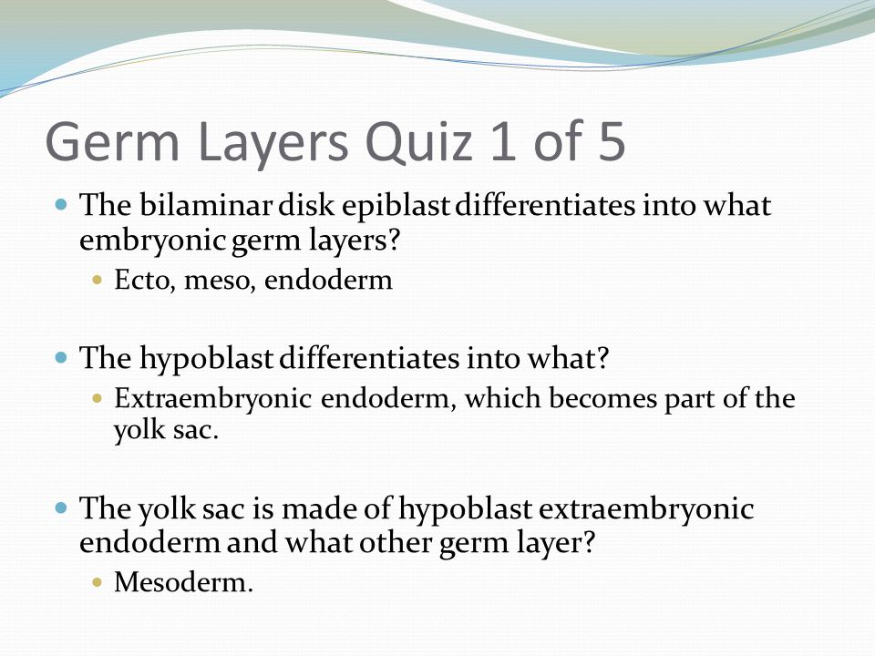 Germ Layers Quiz 1 of 5 The bilaminar disk epiblast differentiates into what embryonic germ layers