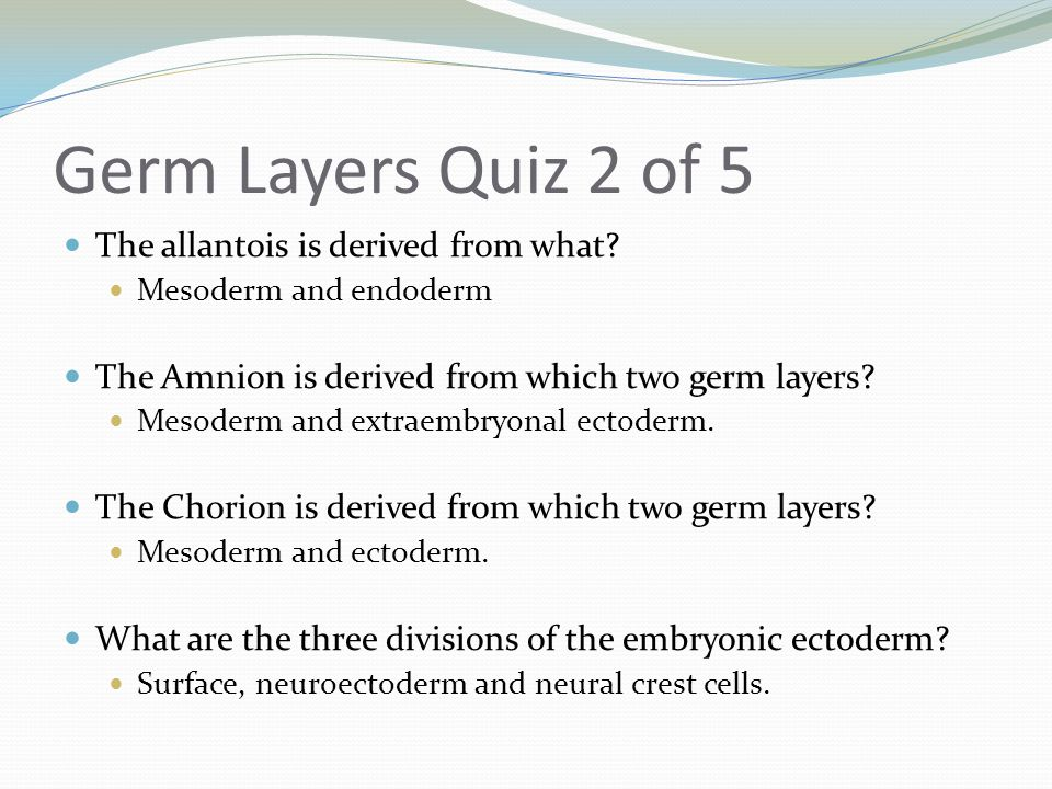 Germ Layers Quiz 2 of 5 The allantois is derived from what