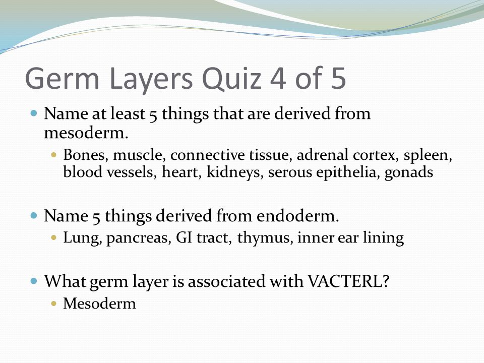 Germ Layers Quiz 4 of 5 Name at least 5 things that are derived from mesoderm.