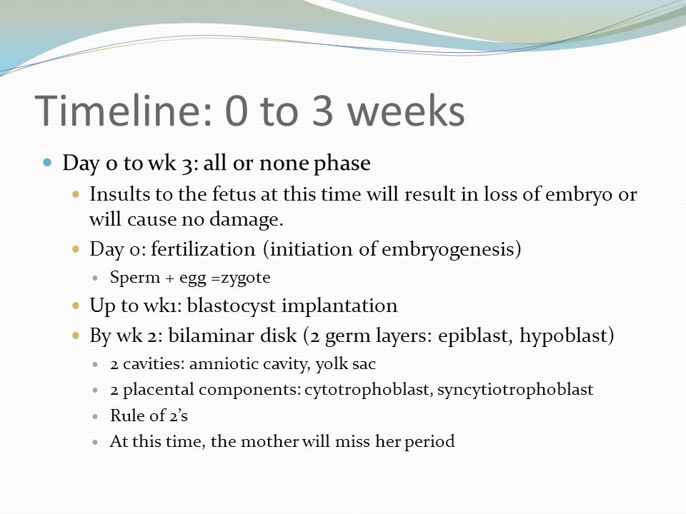 Timeline: 0 to 3 weeks Day 0 to wk 3: all or none phase