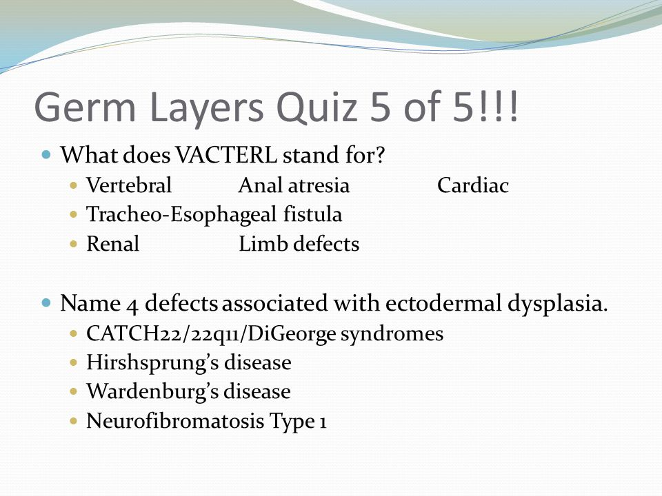 Germ Layers Quiz 5 of 5!!! What does VACTERL stand for