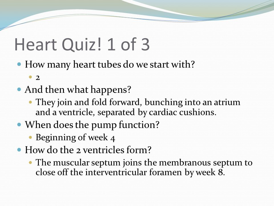 Heart Quiz! 1 of 3 How many heart tubes do we start with