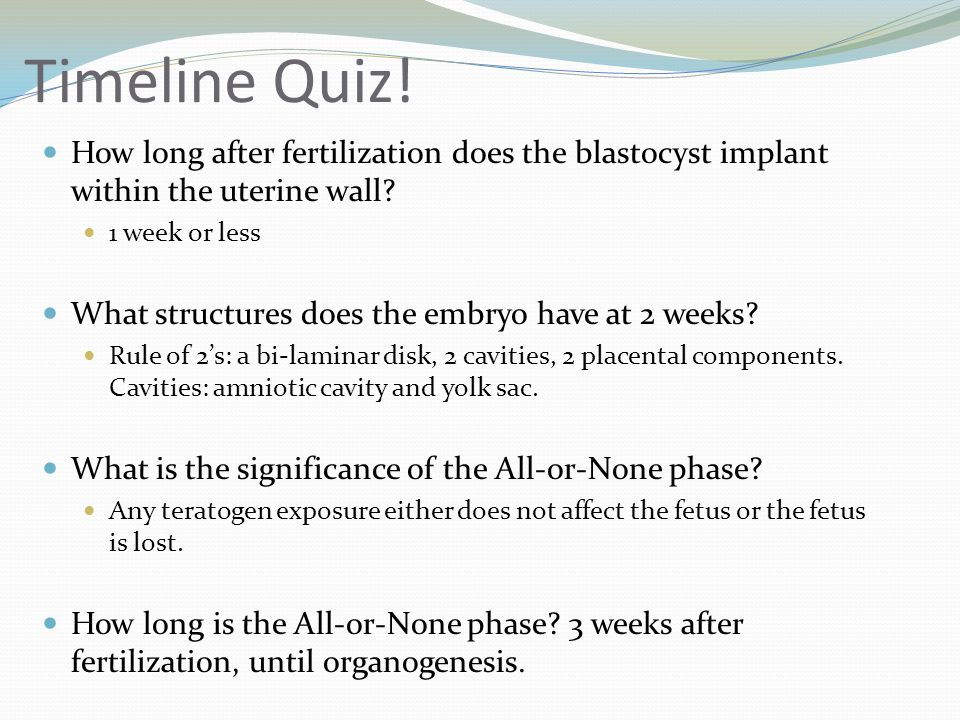 Timeline Quiz! How long after fertilization does the blastocyst implant within the uterine wall 1 week or less.
