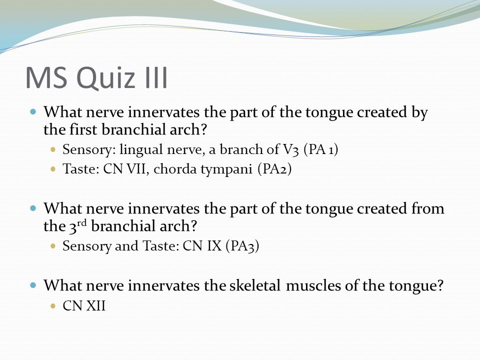 MS Quiz III What nerve innervates the part of the tongue created by the first branchial arch Sensory: lingual nerve, a branch of V3 (PA 1)