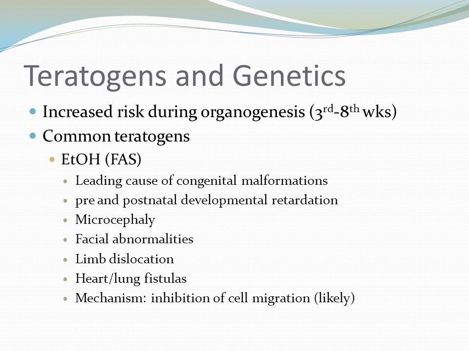 Teratogens and Genetics