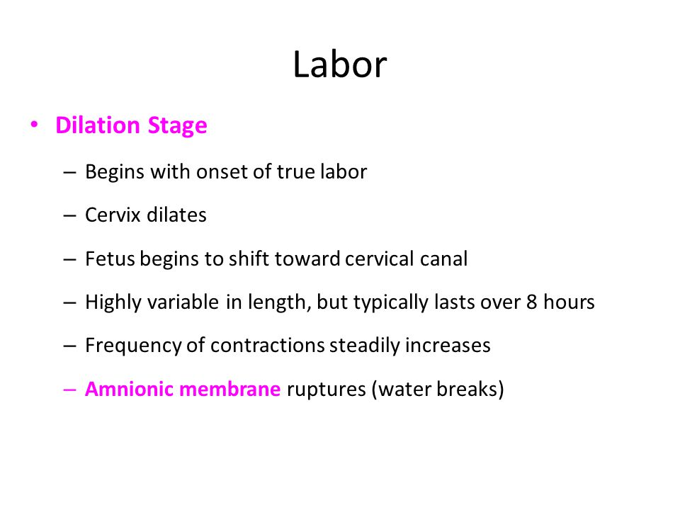 Labor Dilation Stage Begins with onset of true labor Cervix dilates