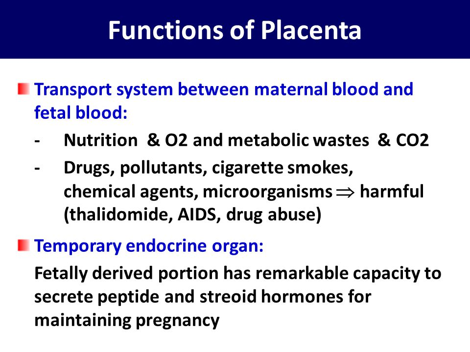 Functions of Placenta Transport system between maternal blood and fetal blood: - Nutrition & O2 and metabolic wastes & CO2.