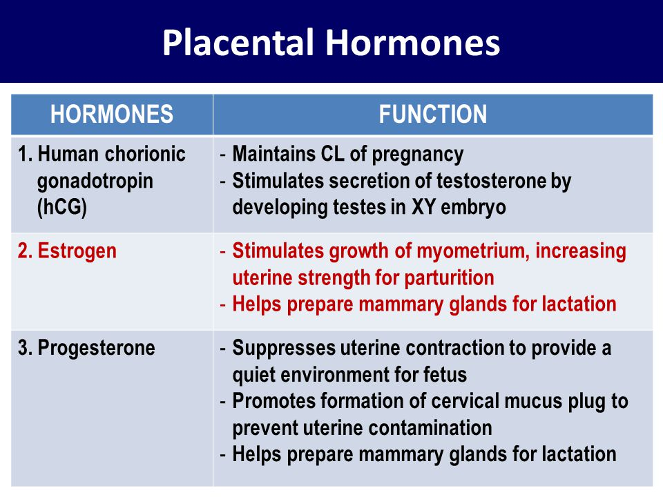 Placental Hormones HORMONES FUNCTION