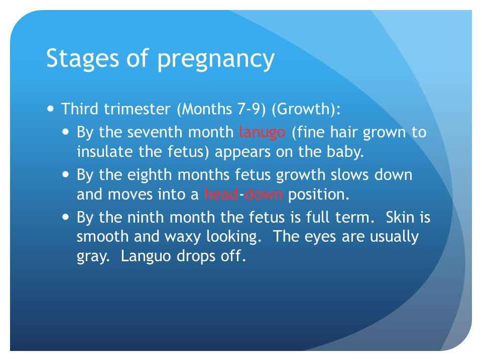 Stages of pregnancy Third trimester (Months 7-9) (Growth):