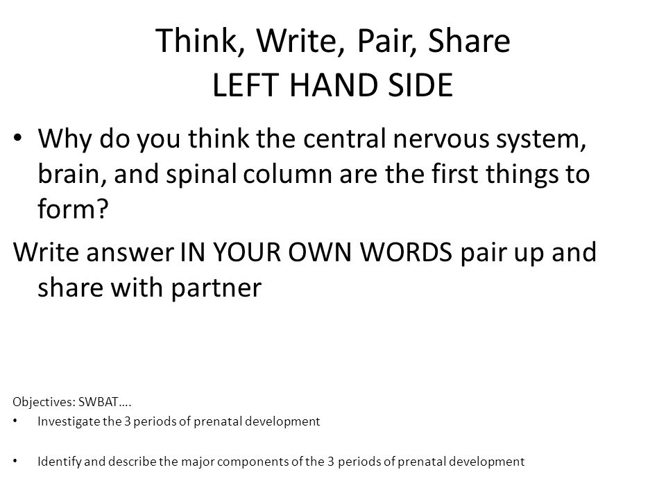 Think, Write, Pair, Share LEFT HAND SIDE
