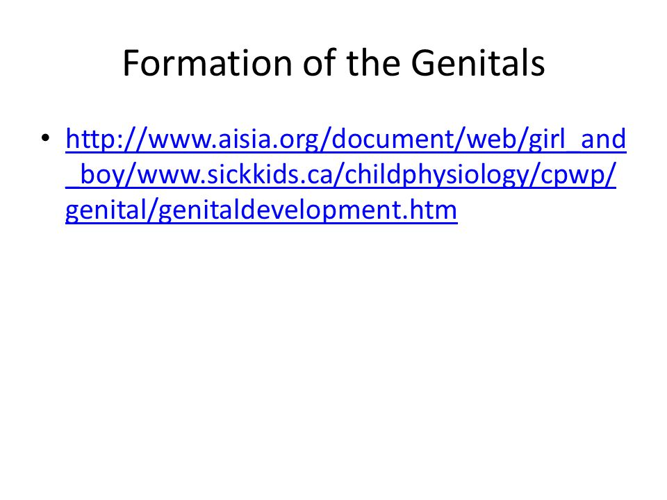 Formation of the Genitals