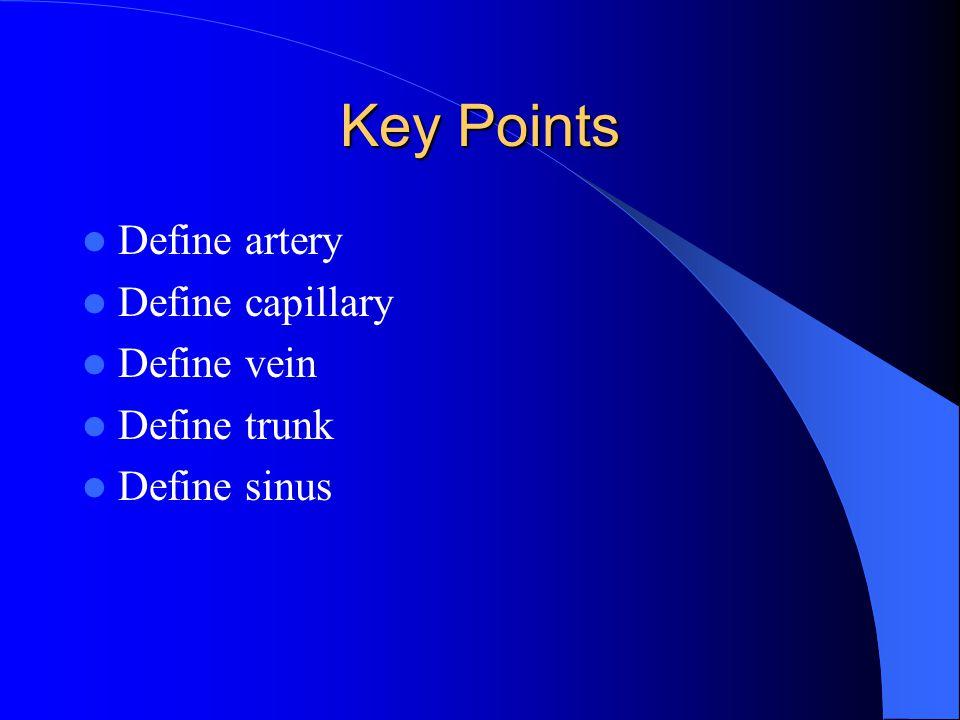 Key Points Define artery Define capillary Define vein Define trunk