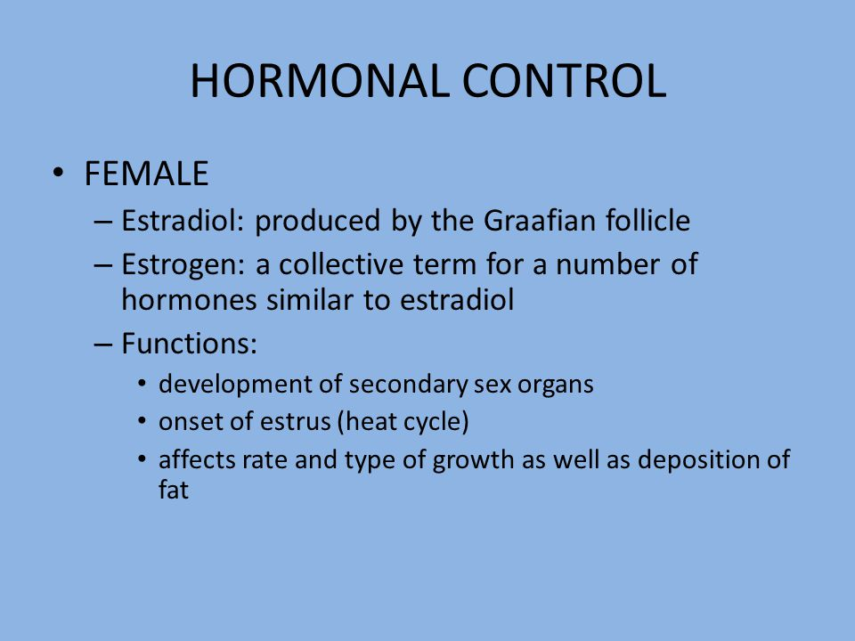 HORMONAL CONTROL FEMALE Estradiol: produced by the Graafian follicle