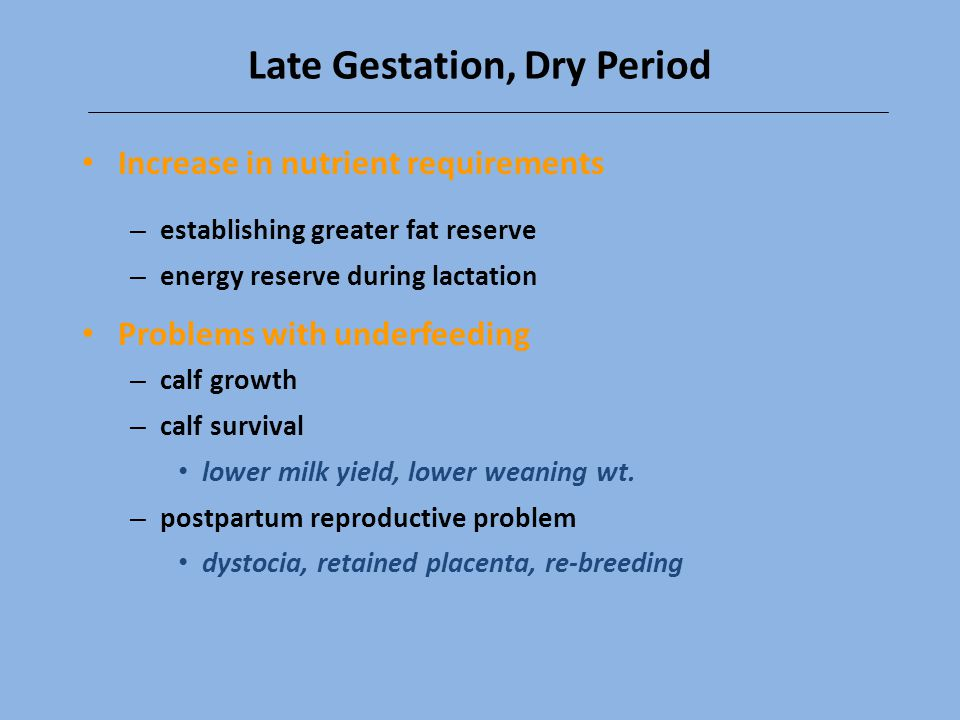 Late Gestation, Dry Period
